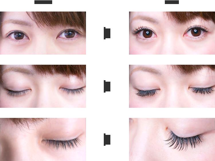 eyelash例